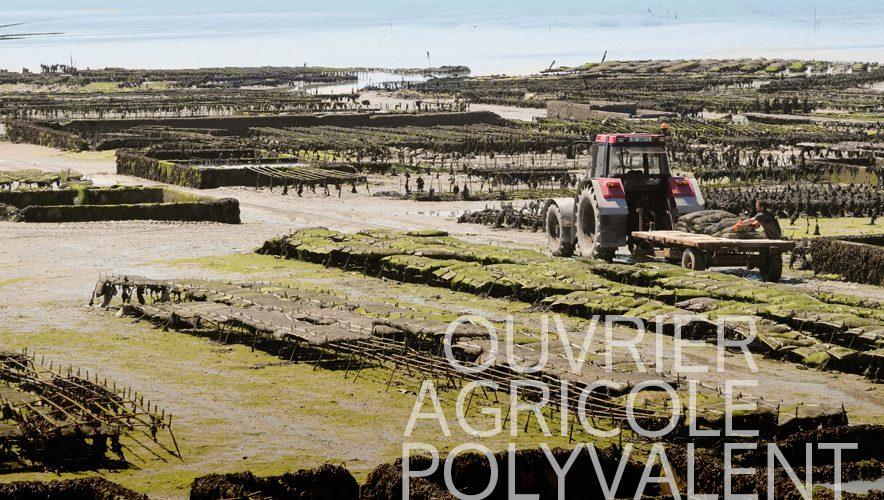 talents-nature-ouvrier-agricole-polyvalent-ostreiculture-mytiliculture